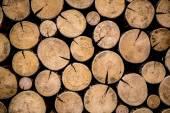 Foto de madeira natural — Fotografia Stock