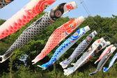 Japanese Carp Streamer — Stock Photo