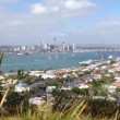 Auckland skyline view from mount victoria hill, New Zealand — Stock Video #53641955