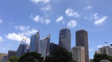 Sydney skyline from the botanica gardens in Australia — Vídeo de stock