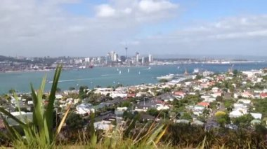 Auckland skyline view from mount victoria hill, New Zealand — Stock Video