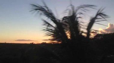 Driving through Cuba during sunset — Stock Video