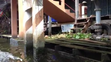 Passing by houses at Damnoen Saduak Floating Market, Bangkok, Thailand — Stock Video