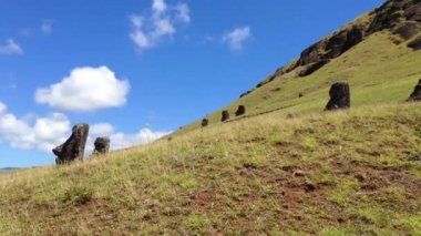 Maoi in Rano Raraku, Easter Island, Rapa Nui — Stock Video
