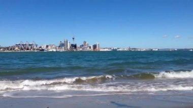 Auckland skyline, New Zealand — Stock Video