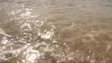 Sea shore at Monkey Mia reserve in Western Australia — Stock Video