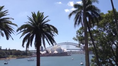 Sydney Opera house from the botanica gardens in Australia — Stock Video