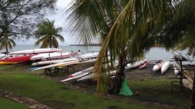 Outrigger canoes in Tahiti, French Polynesia — Stock Video