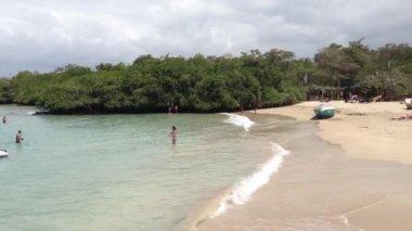 Haven strand in isabela galapagos eilanden, ecuador — Stockvideo