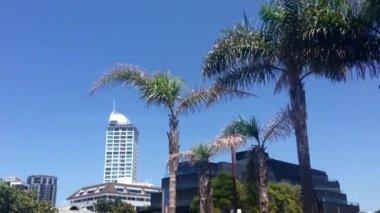 Takapuna Auckland, New Zealand — Stock Video