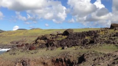 Fallen moai to the sea at the Easter Island, Rapa Nui — Stock Video