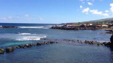 Small nature pool at Hanga Roa, Easter Island, Rapa Nui — Stock Video