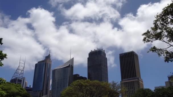 Horizonte de Sydney desde los jardines de botanica en australia — Vídeo de stock