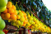 Typical fruit in the naples market — Stock Photo