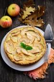 Pastel de manzana casero — Foto de Stock