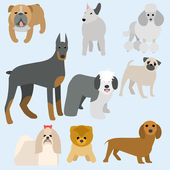 Flat design types of dogs — Stockvektor
