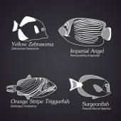 线性风格的异国情调鱼。第 1 部分 — 图库矢量图片