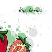 Colorfulberries33 — Wektor stockowy