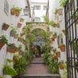 Andalusian patio — Stock Photo #54482691