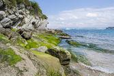 Green coastline, Cantabria, Spain — Stock Photo