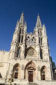готический собор — Стоковое фото