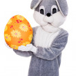 Big Easter bunny hold colorful egg — Stock Photo #67285275