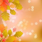 Oak Tree Leaves of Autumn — Stock Vector
