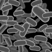 Listeria Sticks on Dark Background — Stock Vector
