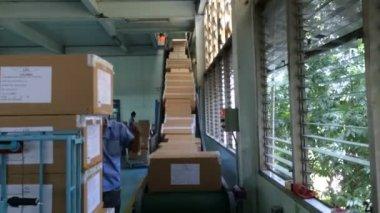 Conveyor belt transfer finished goods — Stock Video