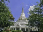 Temple Yasothon art form Culture — Stock Photo