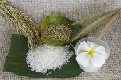 Thailand rijst — Stockfoto
