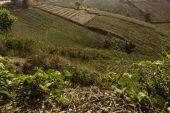 Mountain villages Of Phu Tabberk Phetchabun — Stock Photo