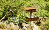 """Pa Hin Ngam 18 August 2015:""""label Signs """" Chaiyaphum Thailand — Stock Photo"""