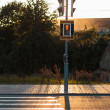 Red traffic lights and pedestrian crossing — Stock Photo #61963381