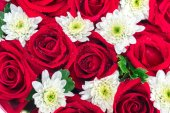Roses and carnations. gift for valentine — Stock Photo