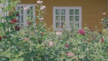 Outside view of english country vintage style house with garden foreground vintage style look color grading, establishing dolly shot — Stock Video
