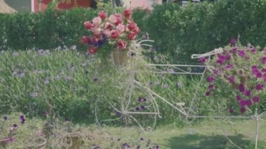 Vintage style bicycles adorned with basket of flowers, parked in the beautiful garden, vintage style look color grading, dolly shot — Stock Video