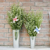 Flowers and pin wheel in the zinc flowerpots. — Stock Photo