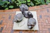 Wooden turtles decorate in garden — Stok fotoğraf
