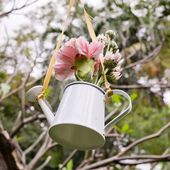 Hanging of flowers and watering can decorate in garden — Stok fotoğraf