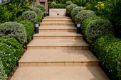 Orange Tiles Stair Steps Leading up to house with small trees. — Stock Photo