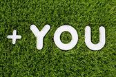 Sie Text hergestellt aus weißem Holz Vektor Gestaltungselement auf Gras backg — Stockfoto