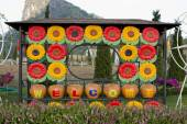 Welcome sign in the garden with colorful flowers on the backgrou — Stock Photo