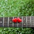Heart on neck guitars and strings on the grass — Stock Photo #65222823