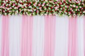 Floral backdrop — Stock Photo