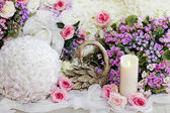 Wedding  decorated with swans — Zdjęcie stockowe