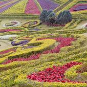 Gartenlandschaft — Stockfoto