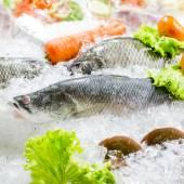 Seafood variety Fresh seafood on ice. — Foto Stock
