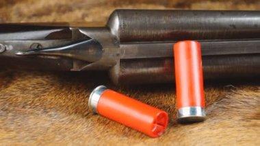 Shotgun with shells — Stock Video