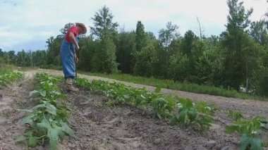 Farmer in Garden using hoe — Wideo stockowe